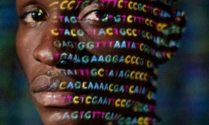 What Studies Say about the Relationship between Coronavirus and Ethnicities