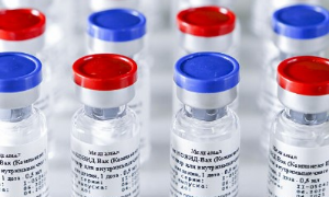 No Alcohol until 42 Days after the Injection of Sputnik V, the Russian Vaccine